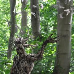 Génie de la forêt 220X200X120 cm (7)